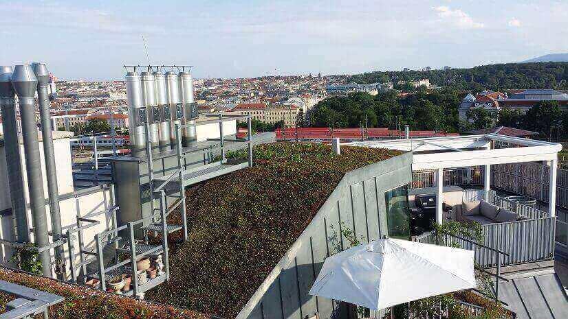 Dachbegrünung Wien